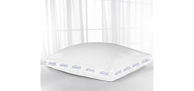 Beauty Rest Queen Size - Extra Firm Pillow
