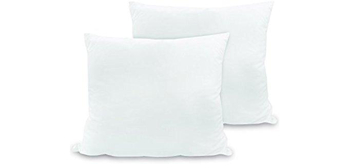 BioPedic Euro Square - Luxurious Trow Pillows