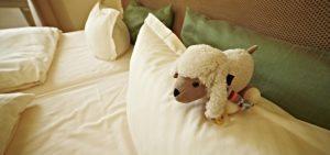 My Pillow Alternatives 1