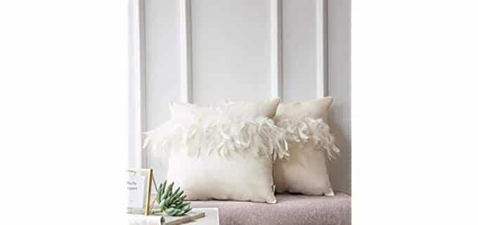 Ashler Home Deco Feather - Vinatage Velvet Decorative Throw Pillow
