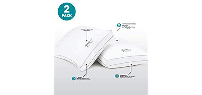 Beautyrest Black Queen Size  - Standard Back Pillows