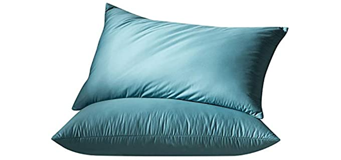 Globon Medium Firm - White Goose Feather Down Pillows