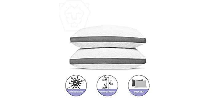 Roore Memory Foam - Silver Infused Pillow