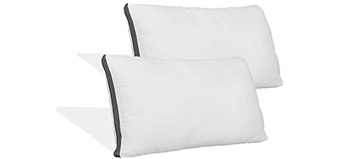 Coop Home Goods Queen - Waterproof Pillow Protector